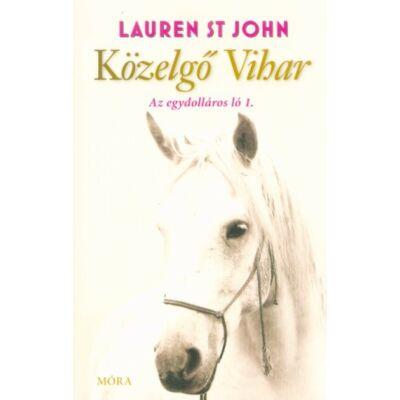 Közelgő Vihar - Egy dolláros ló 1. - Lauren St John